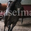 ke-des-chevaux-94