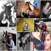 nous-et-horses