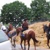 love-jockeys