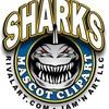 shark-93