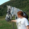 my-horse64