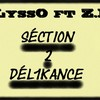 section-2-delinkance
