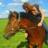 horse-paradiz