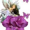 loveuse-angel91