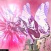 alo-paradis-rose