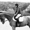 xx-horses-liife-xx