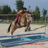 Love-des-chevaux92i