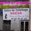 salon-de-toiletage-naeva