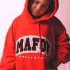 mafmaf8213
