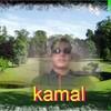 kamal478
