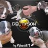 Deltyson93