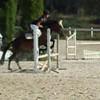 la-tite-cavaliere-du-06