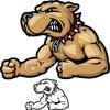 team-pitbull62