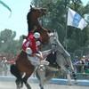 horseballeurdu59