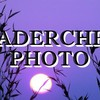 leadercheaphoto