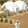 mauritanie2007