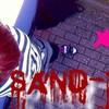 Sand-X