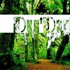 dudub-reggae
