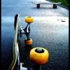 jojo-le-skater-71