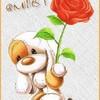 rose-amitie