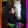 celine-horses