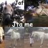 Jaffar-Love