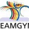 TeamGym