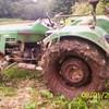diwi29700
