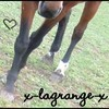 x-lagrange-x