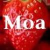 la-moA-kelly-x3