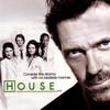 docteur---house