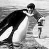 orcacia