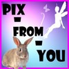 pix-from-you