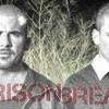 love-prisonbreak