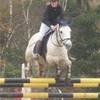 vente-equitation33
