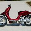 scooter-tun208