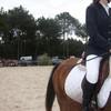 Jeux-concour-poney-chevo