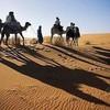 desertmohamed