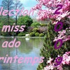 miss-ado-printemps2009