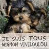 viviloulou