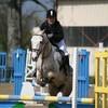 horselove65