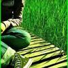 greenatitud