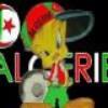 algeriennedu25000