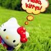 kitty-on