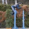 o0Fashion-Horse0o