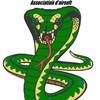 Snake-Corporation