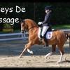 poneys-de-dressage
