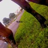 HORSE--x33