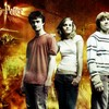 sondages-harry-potter