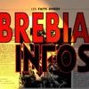 brebia-info
